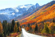2021 GWG Convention: Fall Colors